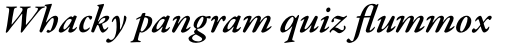 Garamond Premier Pro Semibold Italic sample