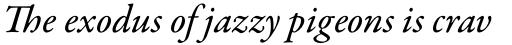 Garamond Premier Pro Medium Italic sample