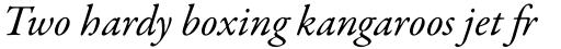 Garamond Premr Pro Italic sample