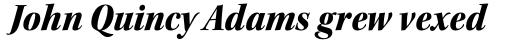 Kepler Std SubHead SemiCond Black Italic sample