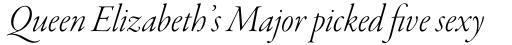Garamond Premr Pro Display Light Italic sample