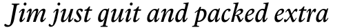 Arbesco DT Italic sample