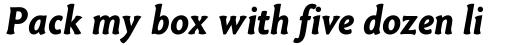 Paradigm Bold Italic sample