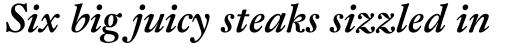 Fleischman BT Pro Bold Italic sample