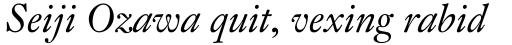 Fleischman BT Pro Italic sample