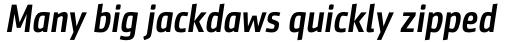Sentico Sans DT Cond Medium Italic sample