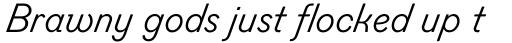 Figgins Sans Italic sample