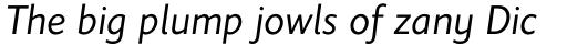 Elisar DT Infant Italic sample