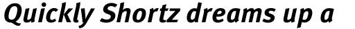 FF Meta Pro Bold Italic sample