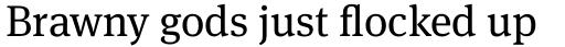 FF Meta Serif Pro Book sample