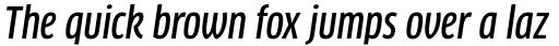 FF Clan Std Condensed Medium Italic sample