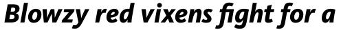 FF Kievit OT ExtraBold Italic sample
