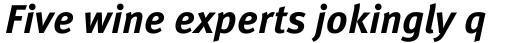 FF Meta OT Bold Italic sample