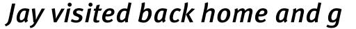 FF Meta OT Medium Italic sample