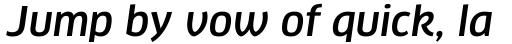 FF Clan Pro Medium Italic sample