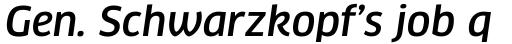 FF Clan Std Medium Italic sample