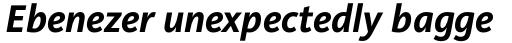 FF Kievit Pro Bold Italic sample