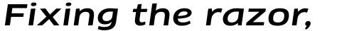 FF Clan Pro Extended Medium Italic sample