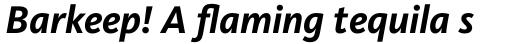 FF Kievit OT Bold Italic sample