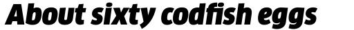 FF Clan Pro Narrow Ultra Italic sample