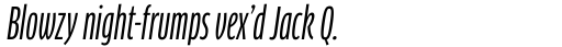 FF Clan Pro Compressed News Italic sample