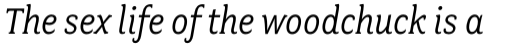 Fairplex Narrow Book Italic sample