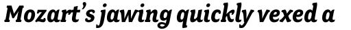 Fairplex Narrow Bold Italic sample