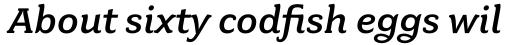 Fairplex Wide Medium Italic sample