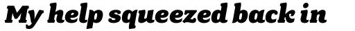 Fairplex Wide Black Italic sample