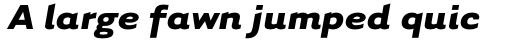 Tarzana Wide Bold Italic sample