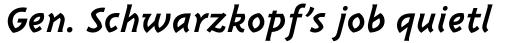 Triplex Italic Bold sample