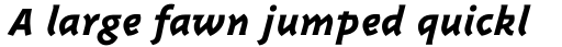 Triplex Italic ExtraBold sample