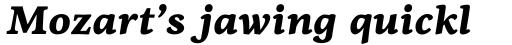 PF Centro Serif Pro Black Italic sample