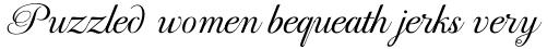 PF Bodoni Script Pro Light sample