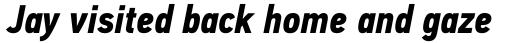 PF DIN Text Cond Pro Bold Italic sample