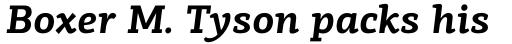 PF Centro Slab Pro Bold Italic sample