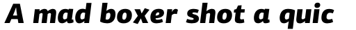 PF Centro Sans Pro Black Italic sample