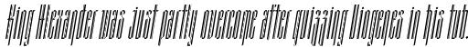 Grant Slim Italic sample
