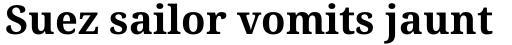 Droid Serif Pro WGL Bold sample