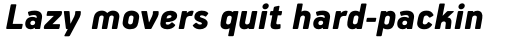 PF Handbook Pro Black Italic sample
