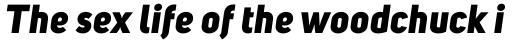 Uni Sans Heavy Italic sample