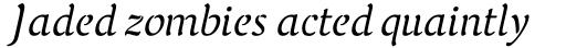 FF Elegie Std Regular Italic sample
