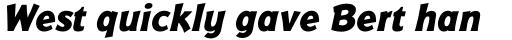 Badger Pro ExtraBold Italic sample