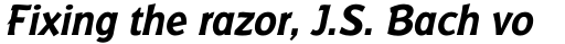 Badger Pro Bold Italic sample