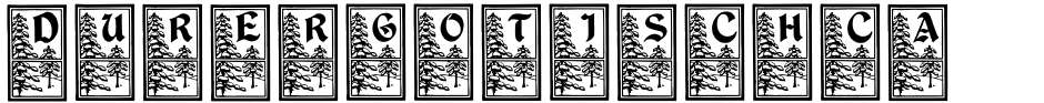 Click to view  DurerGotischCapitals font, character set and sample text
