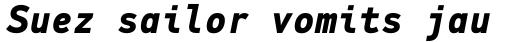 PF DIN Mono Bold Italic sample