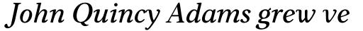 Carniola SemiBold Italic sample