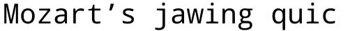 Droid Sans Mono Pro WGL Regular sample