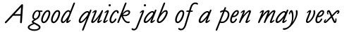 Claude Sans Italic sample
