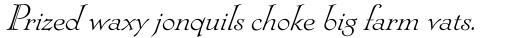 Locarno Italic sample
